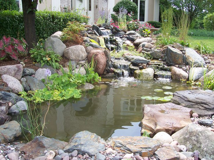 17 best images about home ponds on pinterest backyard for Home ponds and waterfalls