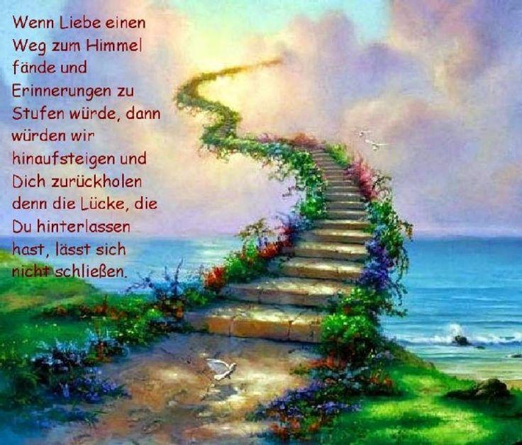 Zum stillen Gedenken...         ...an alle Seelchen,   die den Weg über die Regenbogenbrücke   gegangen sind.           Genießt eure F...