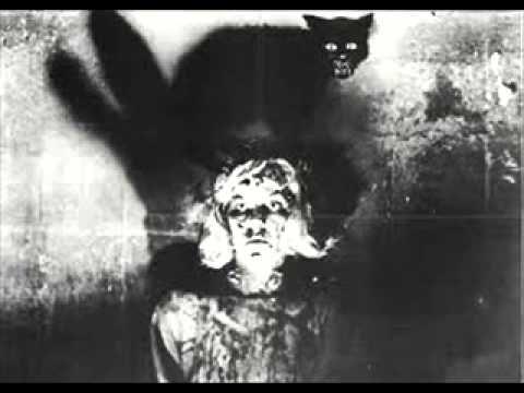 Allan Edgar Poe - Černý kocour
