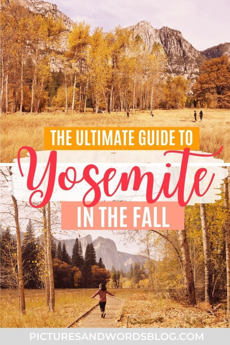 Visiting Yosemite National Park In The Fall Everything You Need To Know Visiting Yosemite National Park In The Fall Everything You Need To Know Fall Nationa In 2020