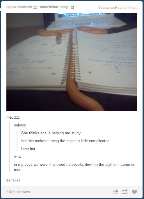 I love the last comment