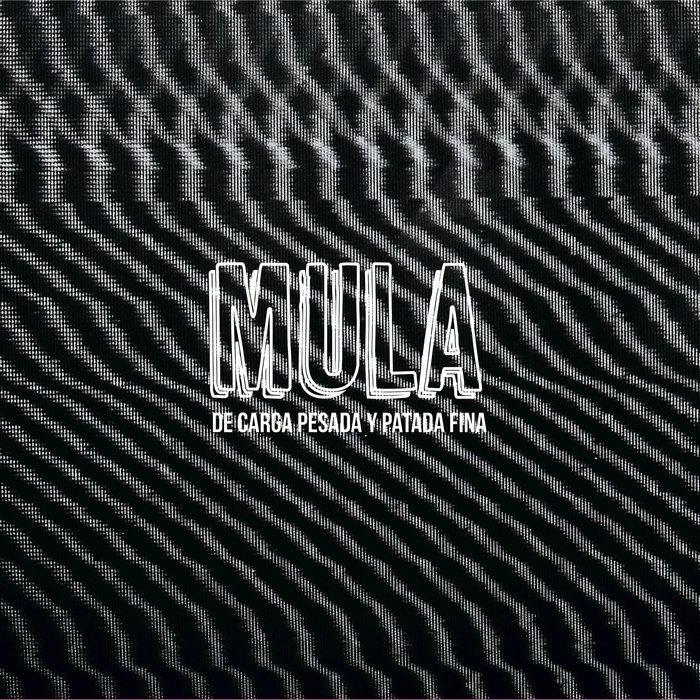 De carga pesada y patada fina | MULA