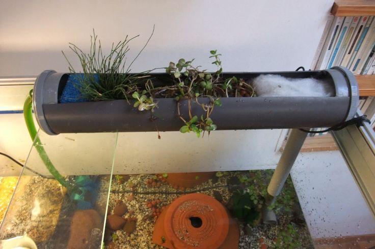 Gouttiere pour terrarium ou aquarium avec plante for Filtre petit aquarium
