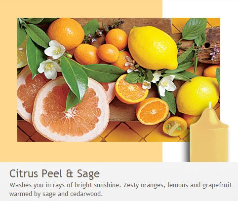 Citrus Peel & Sage: Zesty oranges, lemons and grapefruit warmed by sage and cedarwood. Washes you in bright rays of sunshine!