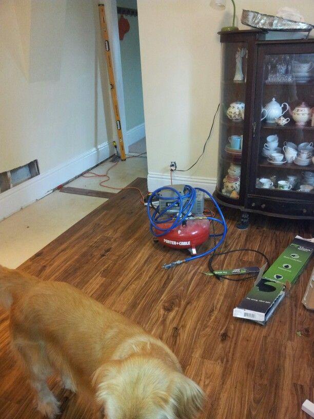 1000 images about diy cheap floors on pinterest vinyls for Cheap durable flooring ideas