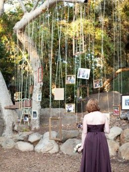 Photo frames suspended from tree branches, creating a romantic backdrop for garden weddings.