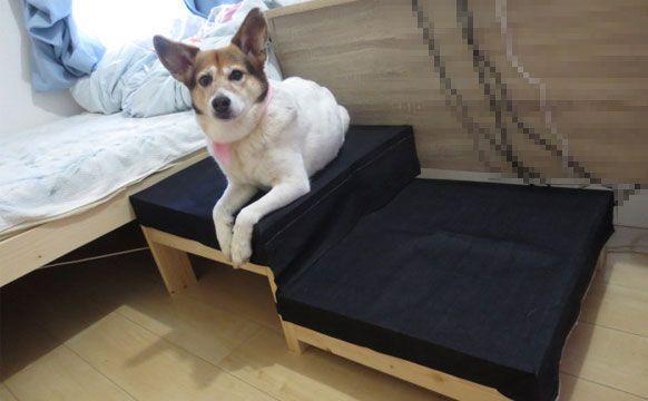 愛犬用の階段 ドッグステップ市販品を買わずにdiyした3つの訳 ぱるかいぬブログ ドッグステップ 犬の階段 階段