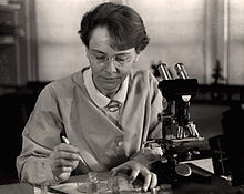 Barbara McClintock, 1983 Nobel Laureate in Physiology or Medicine, was an American scientist and one of the world's most distinguished cytogeneticists