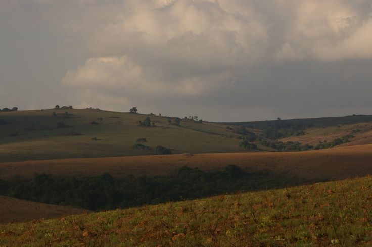 the rolling hills of Nyika National Park in Malawi