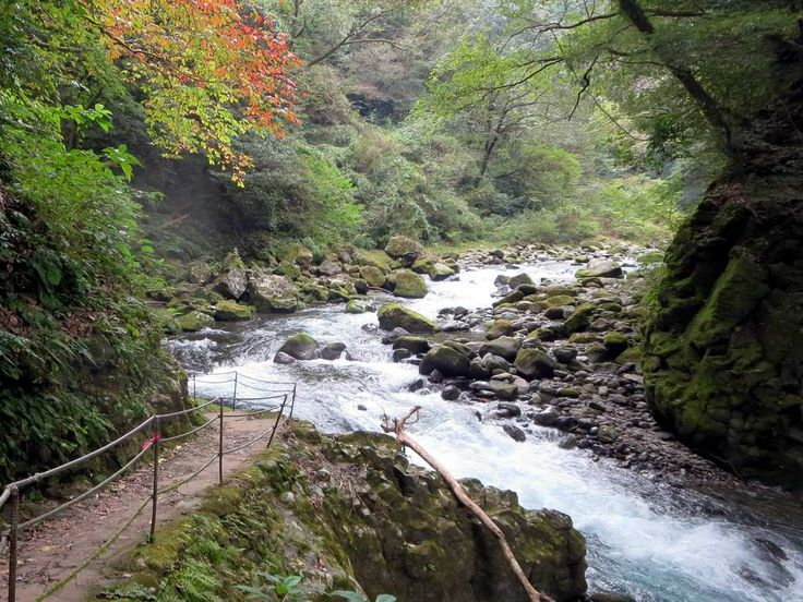 The Iwato River flows through a scenic gorge near the Amanoiwato Shrine at Takachiho on Kyushu Island, Japan.