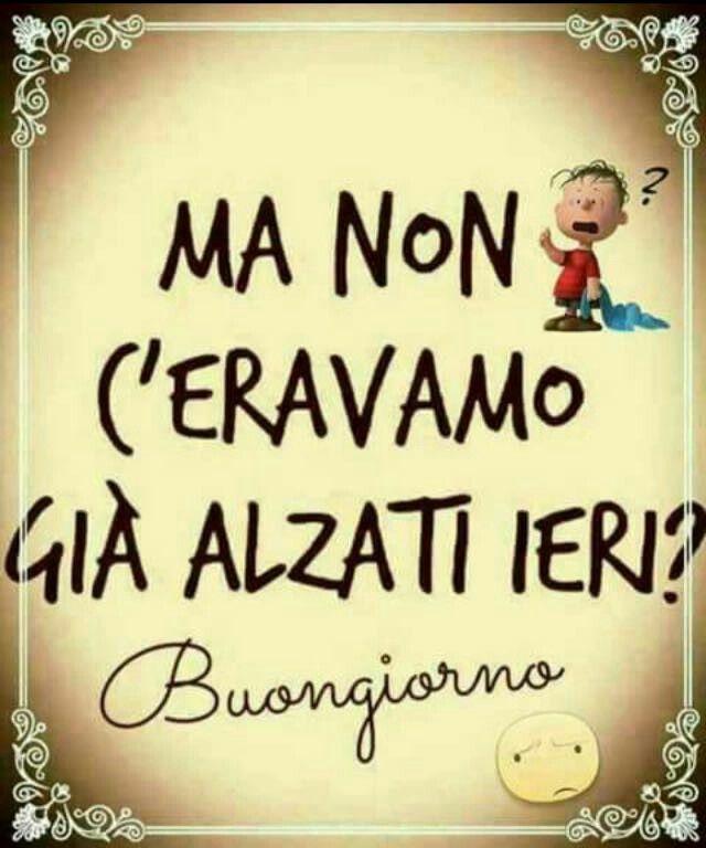 11 best languages images on pinterest languages idioms for Buongiorno assonnato