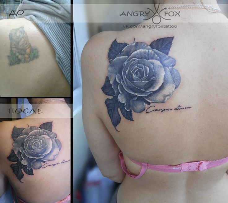 Тату работы Angry Fox. Роза ч/б / rose tattoo black&white