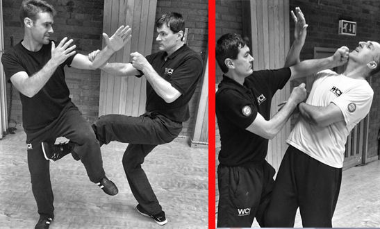 Our Training - Wing Chun International London