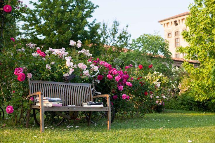 Italian Historical Garden. #italy #gardening #biking #beaty #flowers