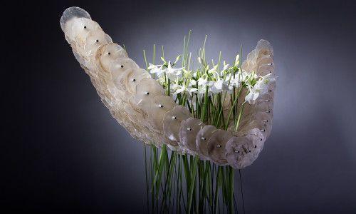 International Floral Art 2014-15