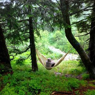 happy swing hammocks instagram - Szukaj w Google