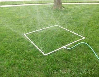 Water day activities on a budget