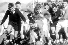 Image result for all blacks early years