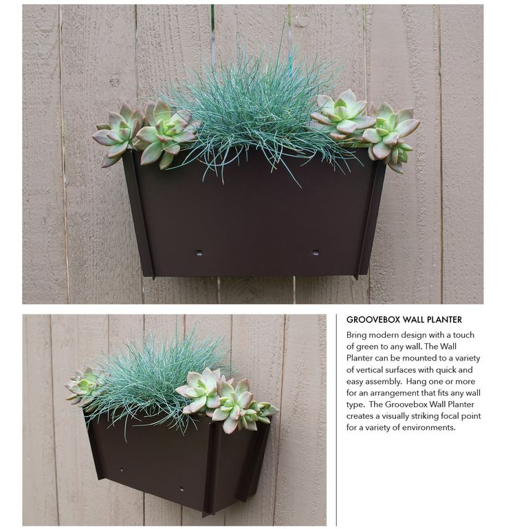 1000 Ideas About Wall Mounted Planters On Pinterest