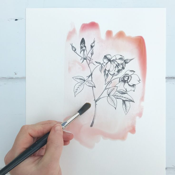 I love combining pen and ink illustrations with big, beautiful watercolour washes.