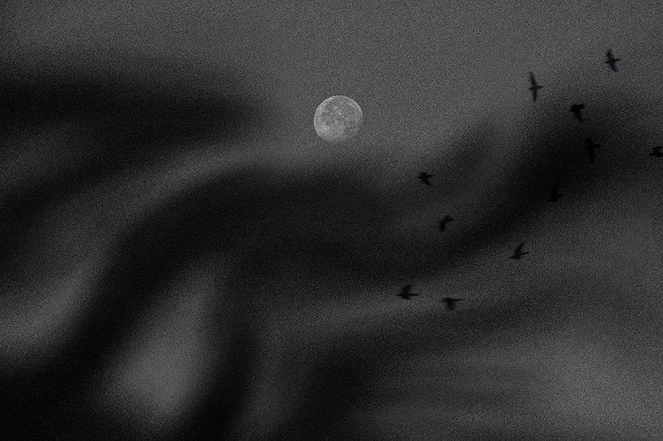 The Moon...The Birds and The Lover's whisper by Ausadavut Sarum