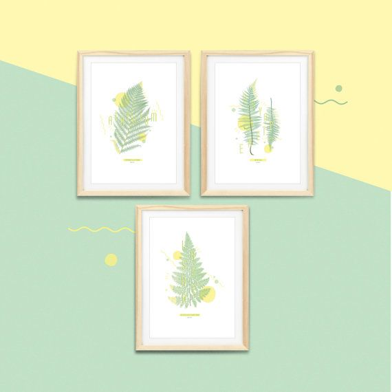 Botanic print - Série de 3 affiches fougères #FERN   |  Impressions botaniques & graphiques en édition limitée