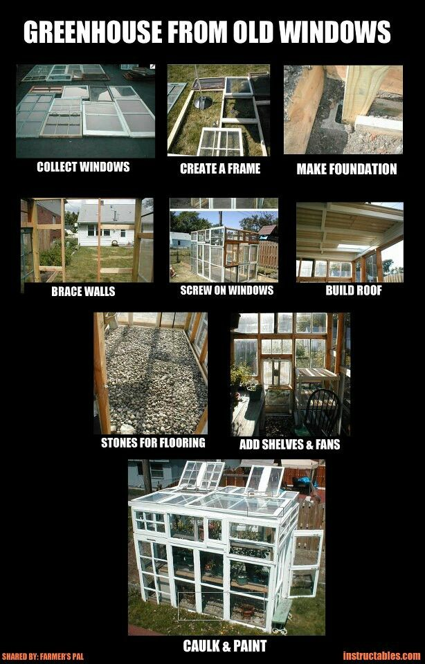 DIY greenhouse with salvaged  windows