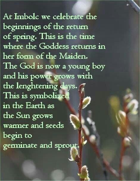 Celebrating the stirrings of life, new beginnings, better days. Happy Imbolc! :-)