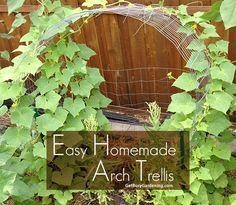 Easy Homemade Arch Trellis