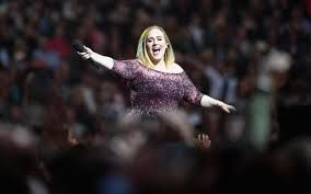 Image result for pictures of adele concert at wembley stadium 29 june 2016