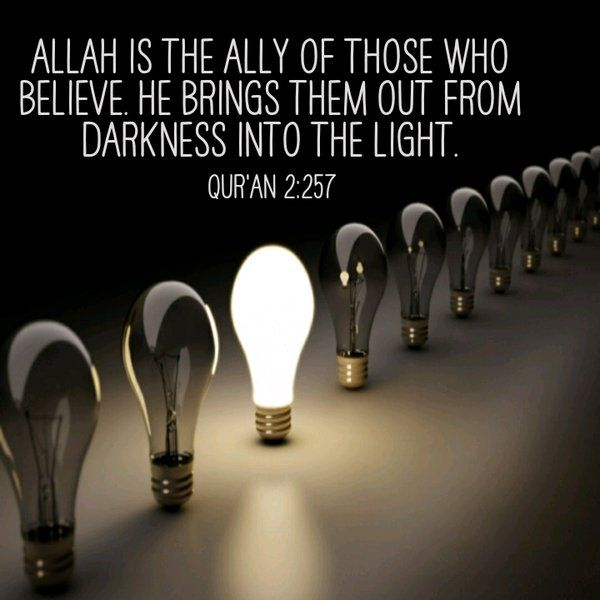 It is quite sad to think that there are some people that do not even have a sense of light and darkness. May Allah guide us all to the right path, Ameen!