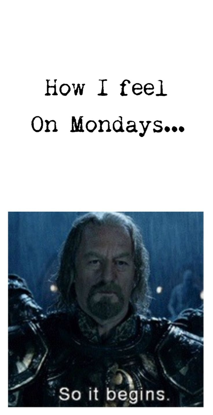 Lord of the rings LOTR humor.  So it begins.  King Theoden