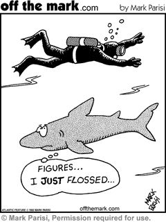 Hopefully all the sharks are flossing before you go on vacation.