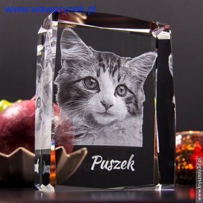 Teraz możesz uwiecznić zdjęcie swojego ukochanego zwierzaka w kryształowej statuetce. Dodając do niego  osobistą dedykację  stworzysz pamiątkę, która będzie przypominać Ci (lub obdarowanej nią osobie) o przyjacielu sprzed