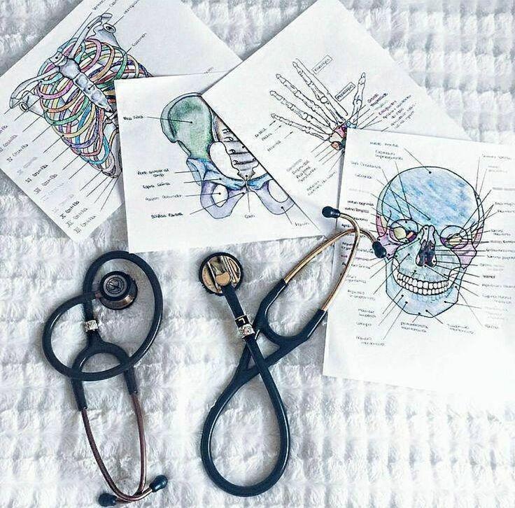 """9,282 curtidas, 19 comentários - Anatomia é 💀 (@anatomiae) no Instagram: """"[ATENÇÃO 📢] - Os vídeos da 2ª Semana do Futuro Médico vão sair do AR no Domingo às 23h59.…"""""""