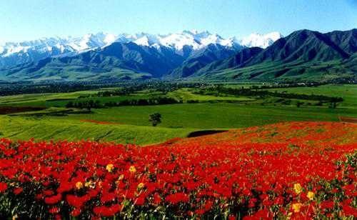 turkey abdullah gül | Kyrgyzstan-Turkey: a new big brother? – Turkish Forum Archive