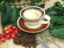 The Sabie Valley Coffee Tour