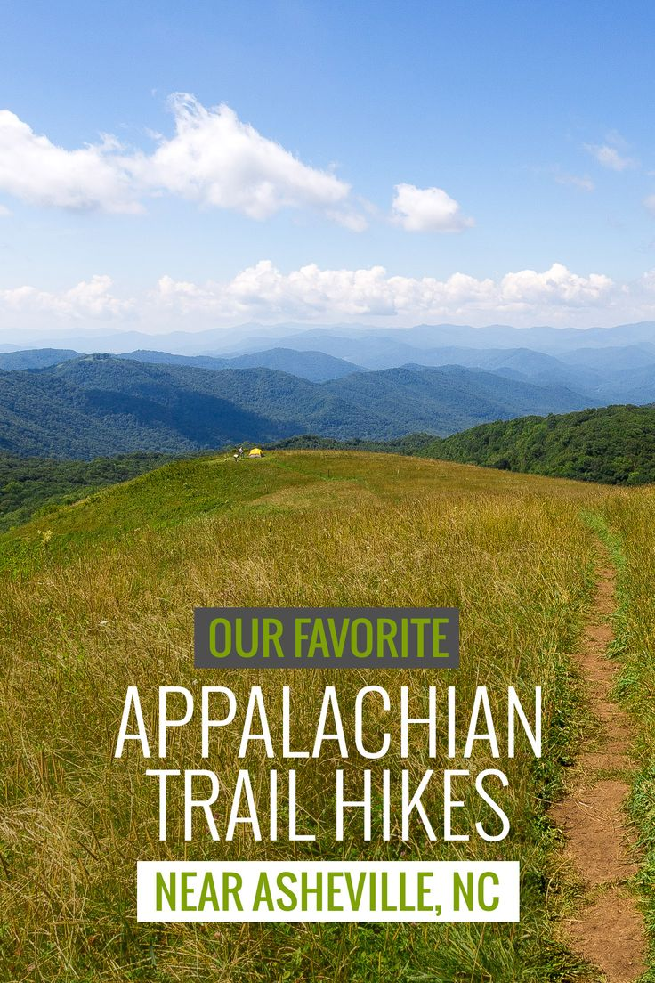 Appalachian Trail in North Carolina: our favorite hikes near Asheville