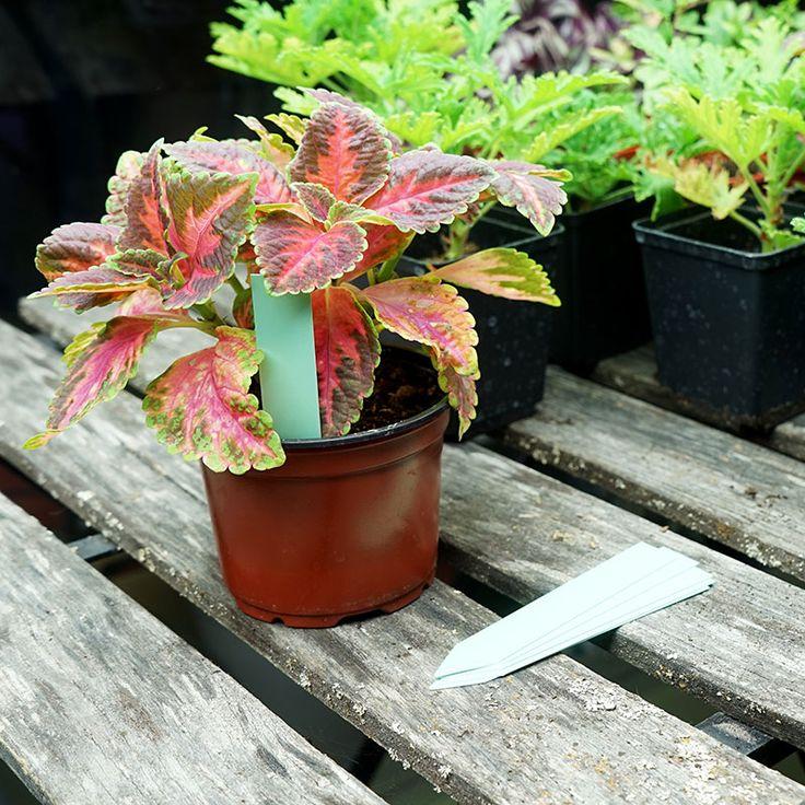 Plantetiketter 20-pack, gröna #Plantetiketter #Växtetiketter