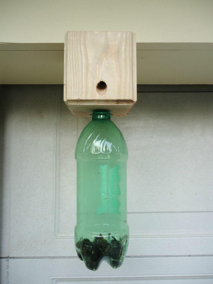 Carpenter Bee Trap Cedar Safe And Effective Bees