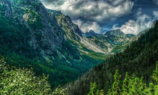 Biglietto d'ingresso nei parchi nazionali dei Tatra per la manutenzione dei sentieri