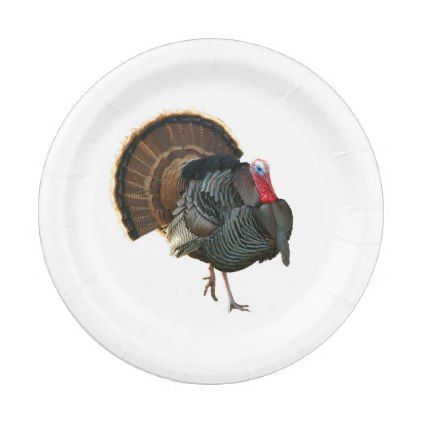 Tom Turkey strutting his stuff Paper Plate - kitchen gifts diy ideas decor special unique individual customized