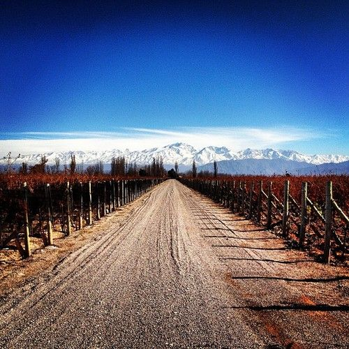 Best Time To Travel To Argentina Wine Country