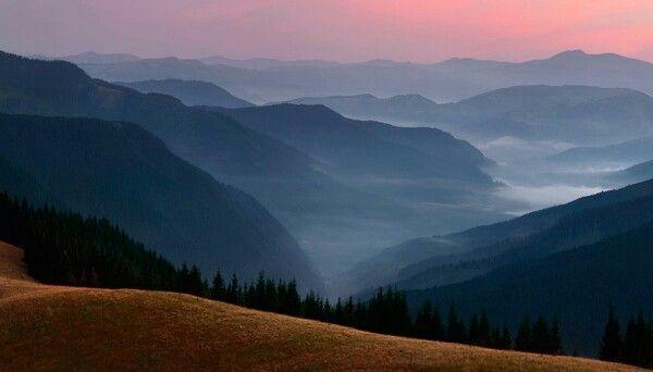 Розовое небо и туман