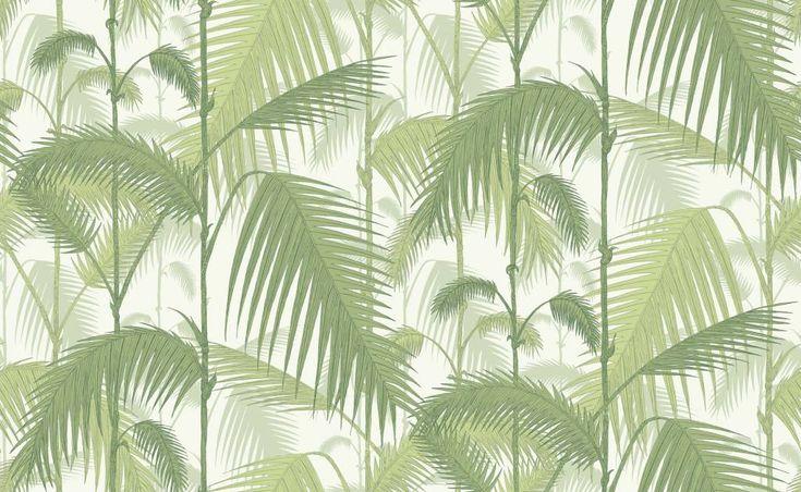 Cole & Son Palm Jungle Groen 95/1001 Behang