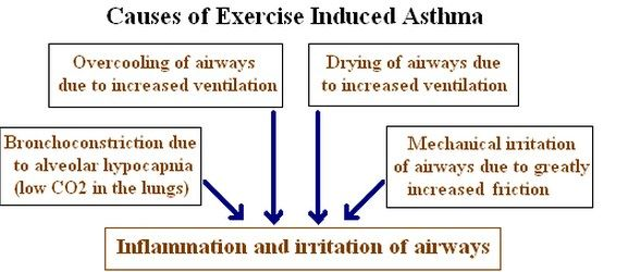 Asthma Symptoms >>> You can find more details by visiting the image link.