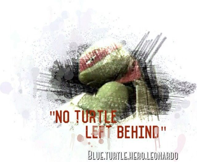 Ninja Turtle Quotes Adorable 589 Best Tmnt Images On Pinterest  Teenage Mutant Ninja Turtles