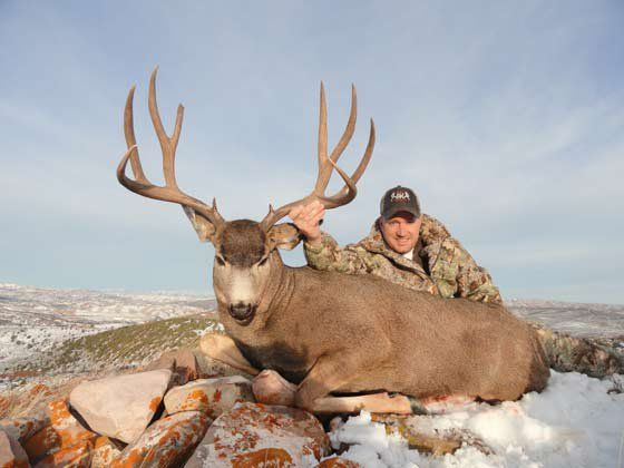 Mule Deer Hunting | Hunting Guide | The R & K Hunting Company
