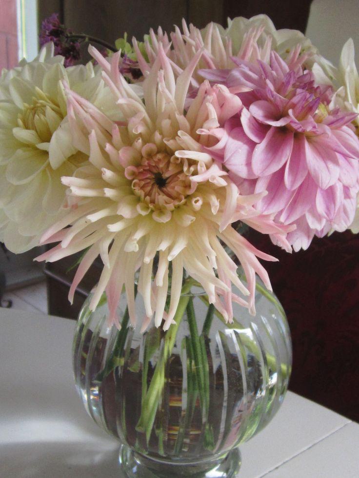 Her er dine blomster i en smuk buket, som pynter på mit spisebord