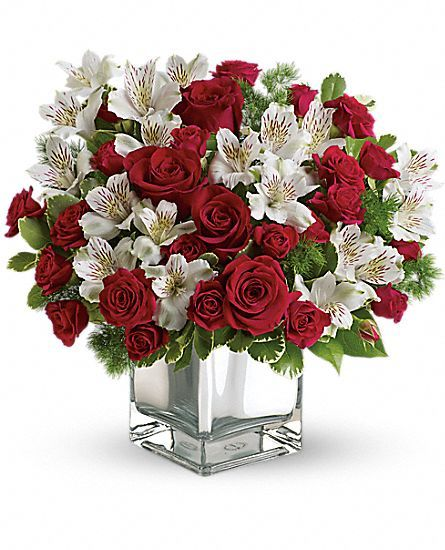 Best images about beautiful flowers for christmas on